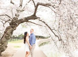 DC Cherry Blossom Engagement   James + Gellaine