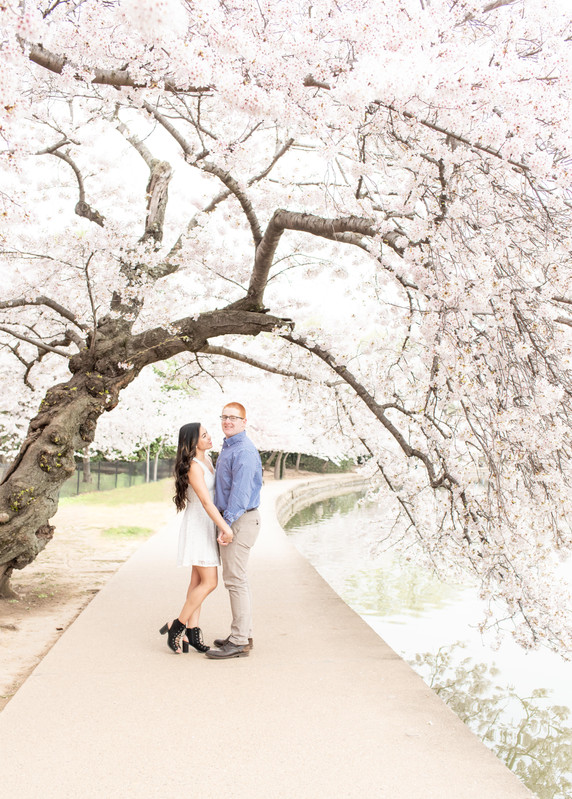 DC Cherry Blossom Engagement | James + Gellaine