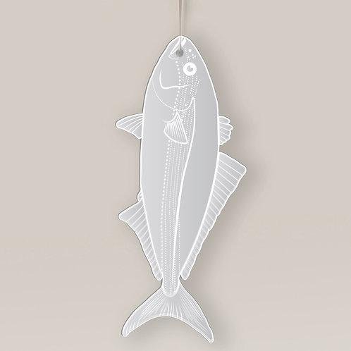 Frosty Fish ACM