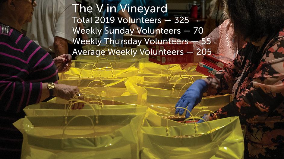 V in Vineyard.jpg