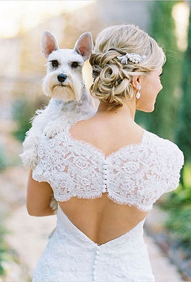 pet wedding.jpg