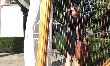 ontario wedding officiant and ontario wedding harpist