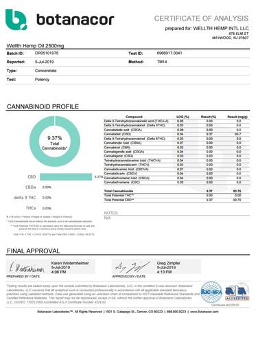 WELLTH HEMP INTL LLC Wellth Hemp Oil 250