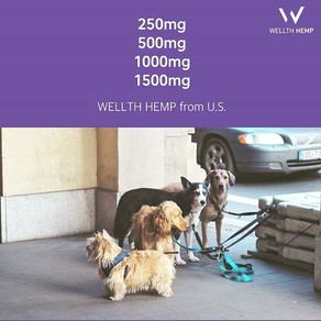 WELLTH 헴프오일은 반려동물의 몸무게와 건강상태에 따라 적합한 제품을
