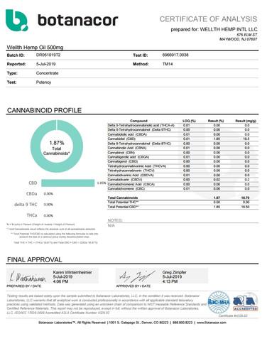 WELLTH HEMP INTL LLC Wellth Hemp Oil 500