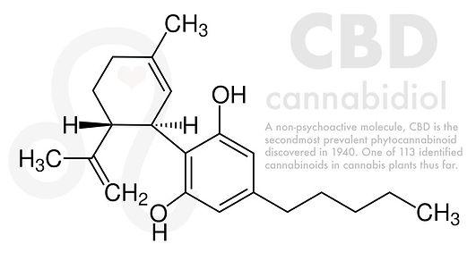 CBD-molecule.jpg