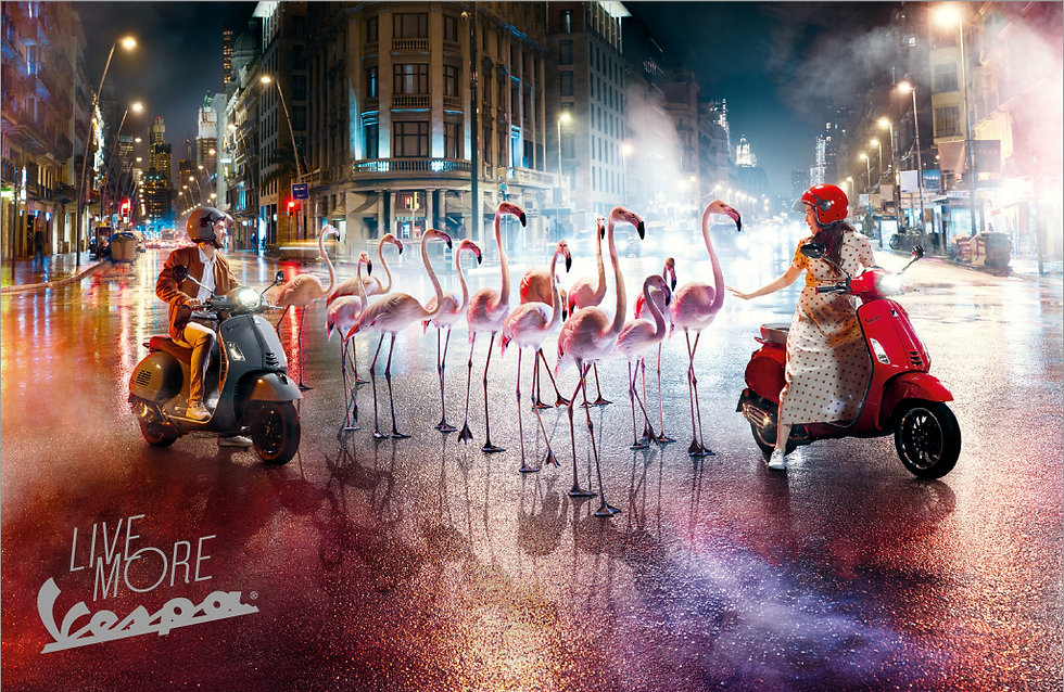 DV_Vespa-Flamingo_3sp-100mm_DD.jpg