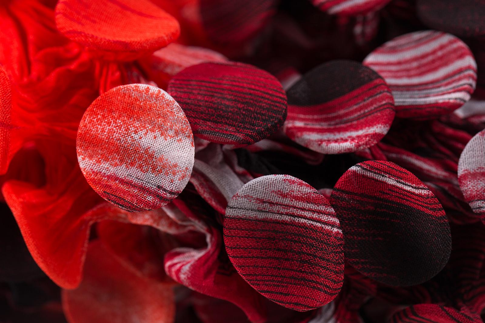 Fungi-10-Detail-b_Web