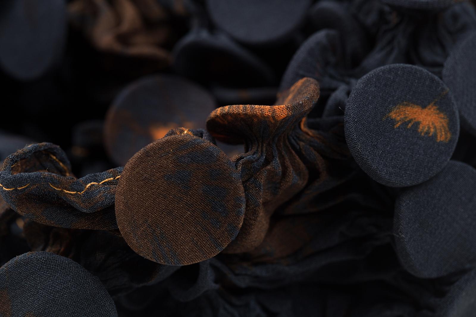Fungi-2-Detail-a_Web