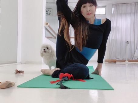 Ballet Stretch class