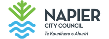 napier_council_logo.png