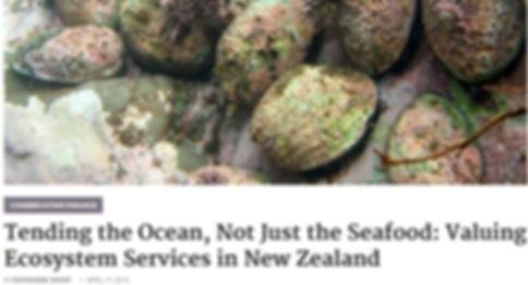 tending the ocean.JPG