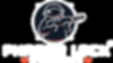 Phaserlock_logo_White_Alpha_HD.png