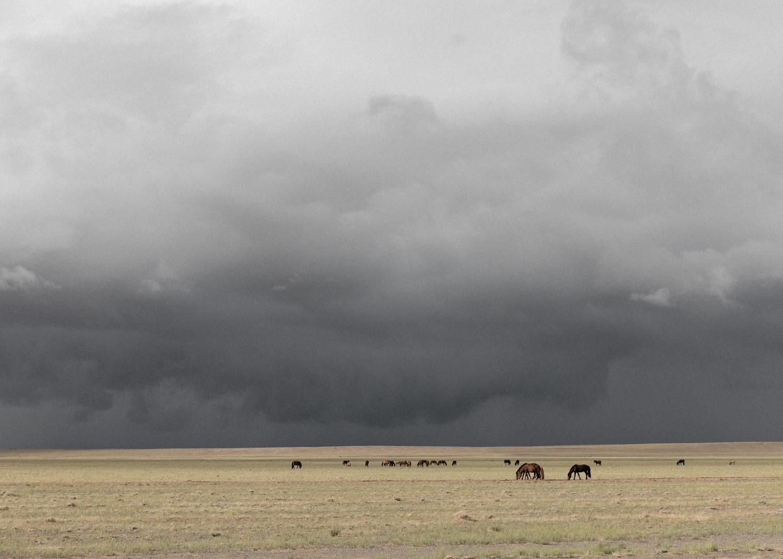 gobi desert 3