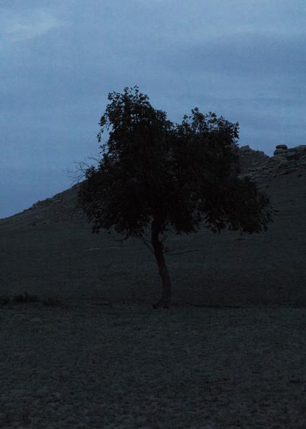 gobi desert 7