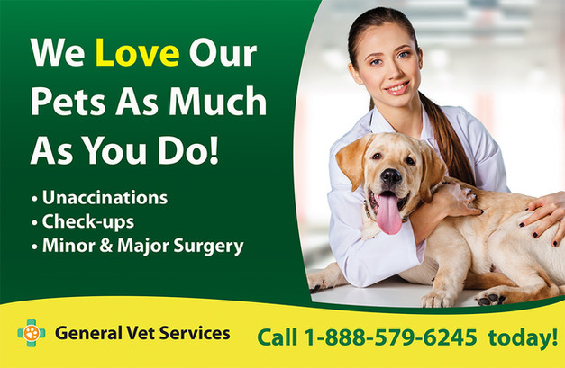 Veterinary Direct Mail Postcard Sample 04
