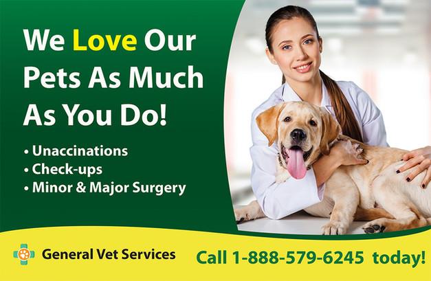 Veterinary Direct Mail Postcard Sample 04