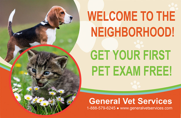 Veterinary Direct Mail Postcard Sample 03