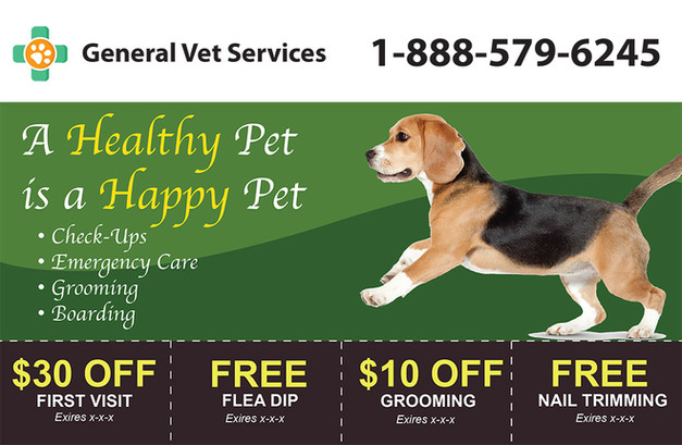 Veterinary Direct Mail Postcard Sample 08