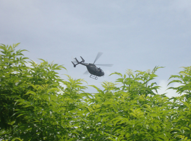 Pot Grower Calls 911 on Himself after Hearing False Chopper Chase