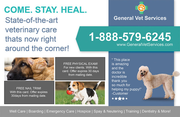 Veterinary Direct Mail Postcard Sample 06