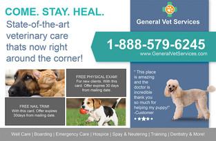 Veterinary Direct Mail Postcard Sample 06