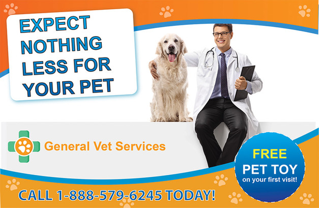 Veterinary Direct Mail Postcard Sample 05
