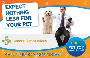 Veterinary Direct Mail Postcard Sample 05