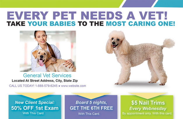 Veterinary Direct Mail Postcard Sample 07