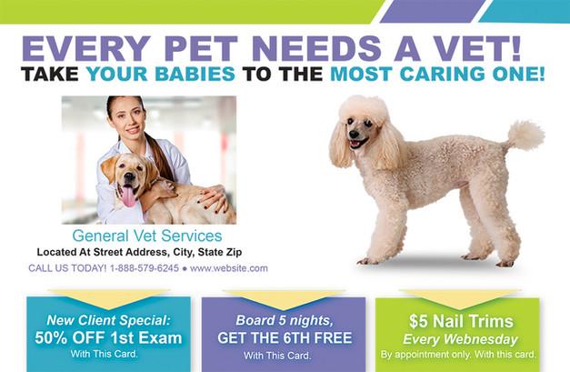 Veterinary Direct Mail Postcard Sample 07