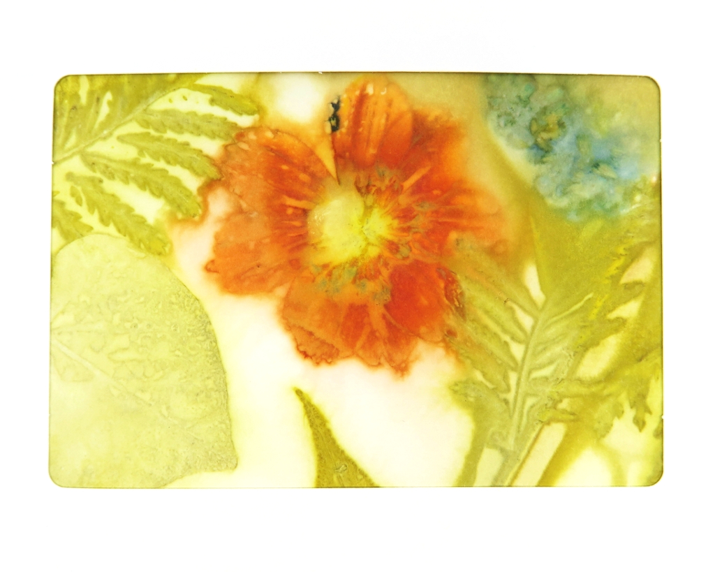 Ecoprinted Blank Note Card