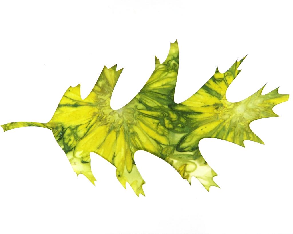 Oak Leaf Ecoprint Blank Greeting Card 2