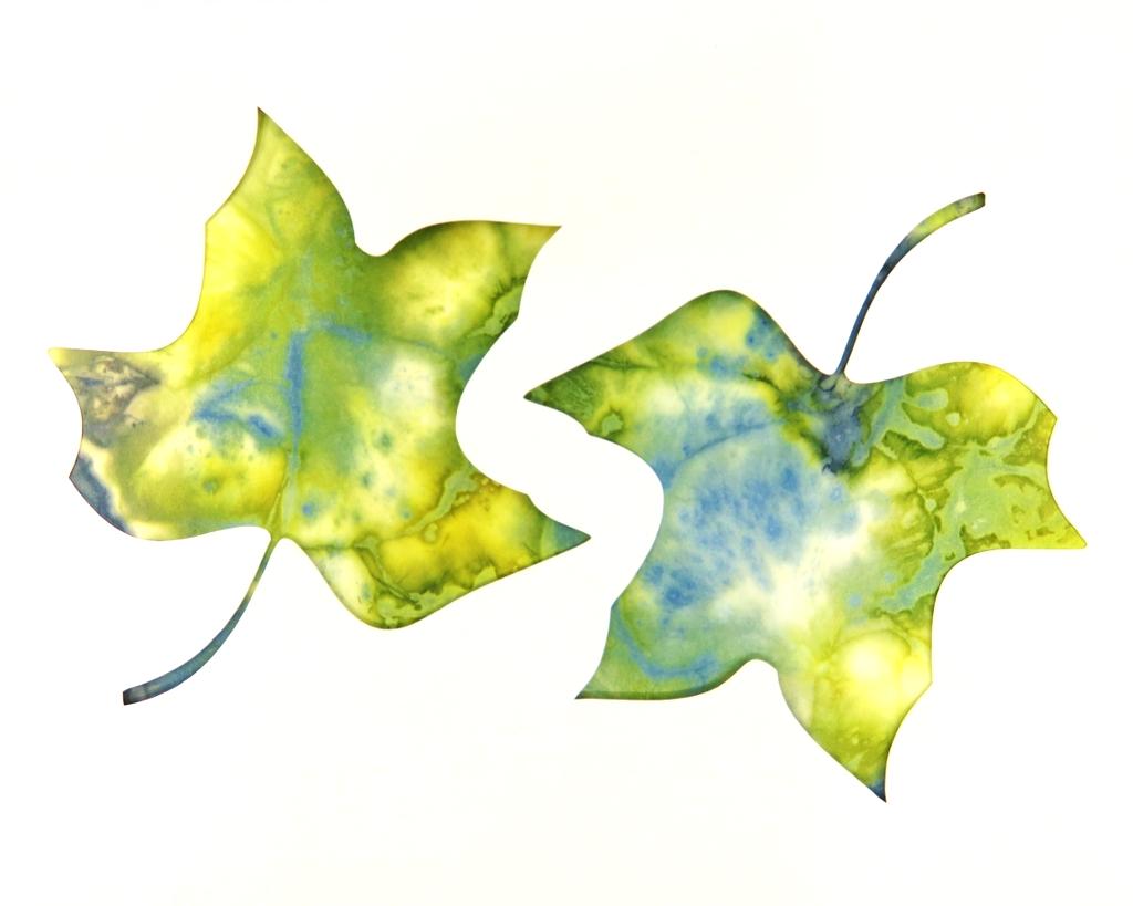 Tulip Tree Leaf Ecoprint Blank Greeting Card 1