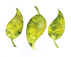 Leaf Trio Ecoprinted Blank Greeting Card 2