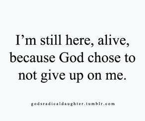 Still.