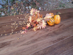 Fall Foliage and Gourds