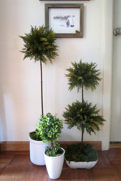 Hand made faux topiaries