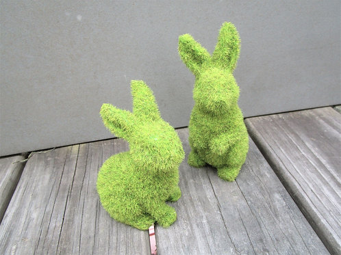 Pair of Moss Bunnies / Easter Bunny Rabbits