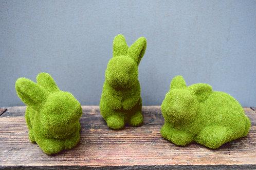 Moss Bunnies / Easter Bunny Rabbit