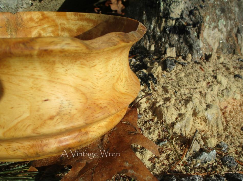 Pine Burl Bowl