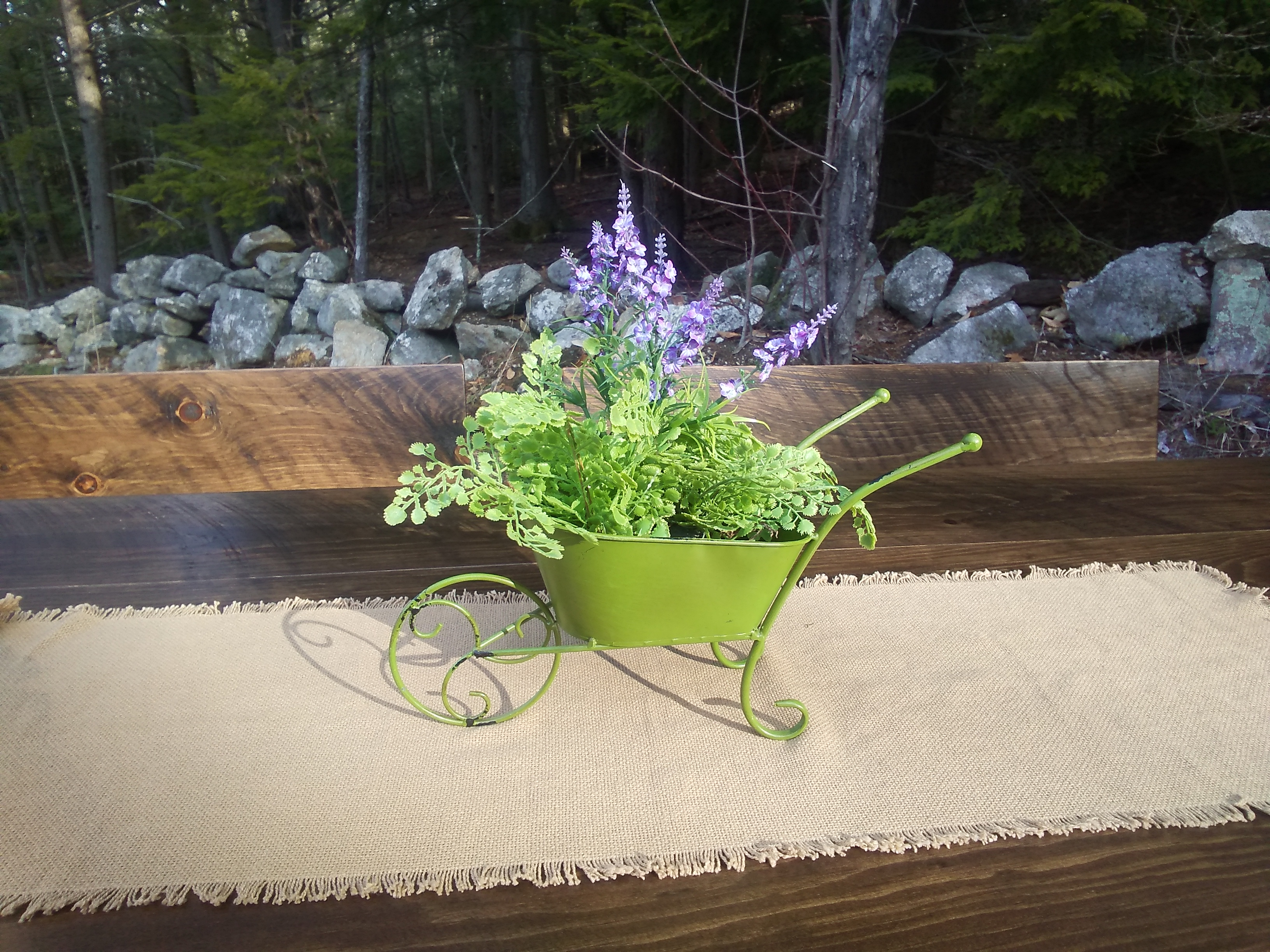 green wheelbarrow with ferns