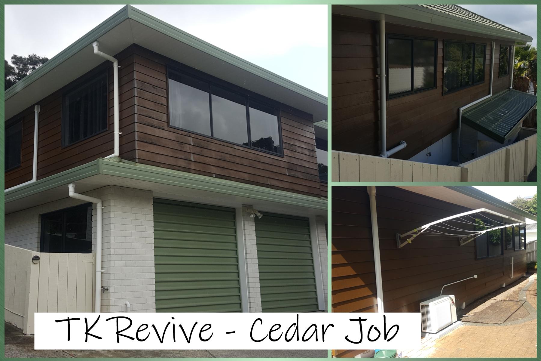 Noel - Cedar Job - Torbay.jpg