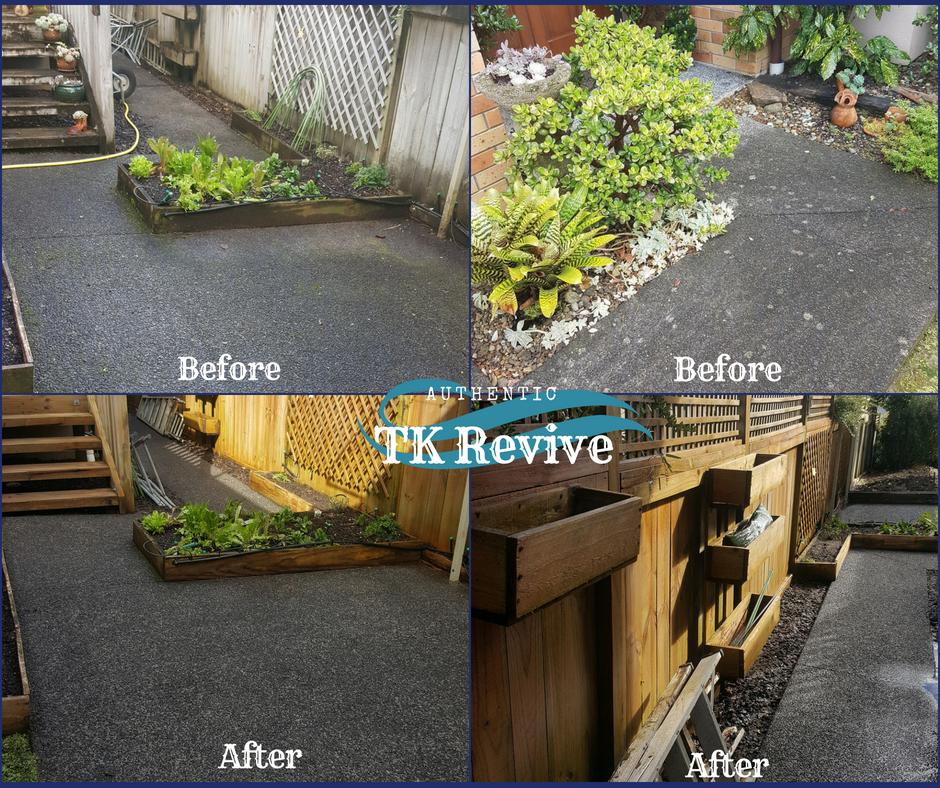 Kyle Rd - Vege Garden - Rosemary.jpg