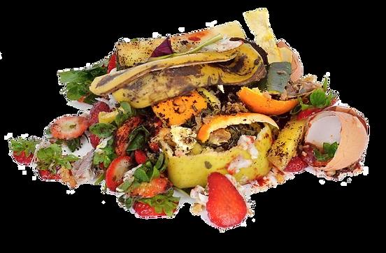 food scraps transparent.png