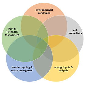 5 focal points to creating an ecologically balanced system