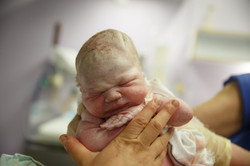 Midwife Holding Up A Vernix Covered Newborn