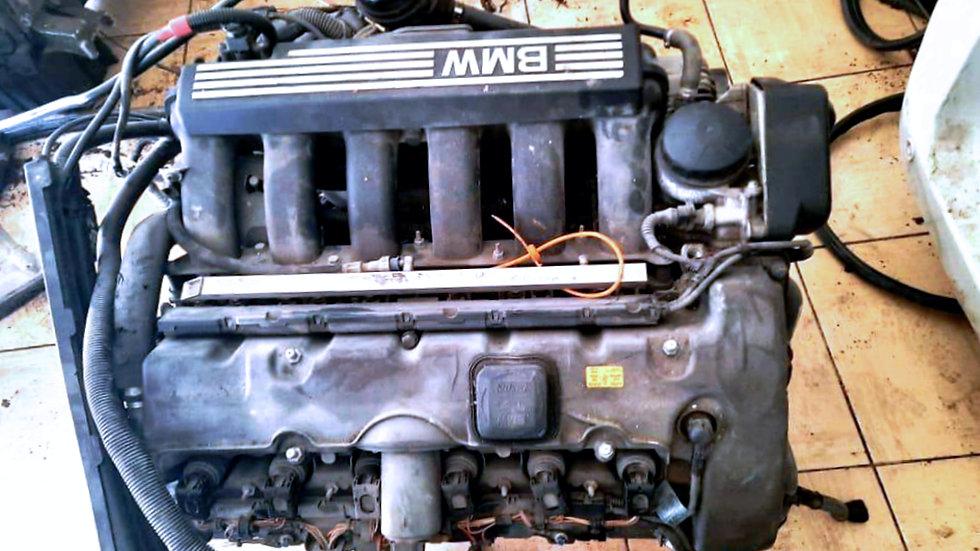 N52 MOTOR 2.5