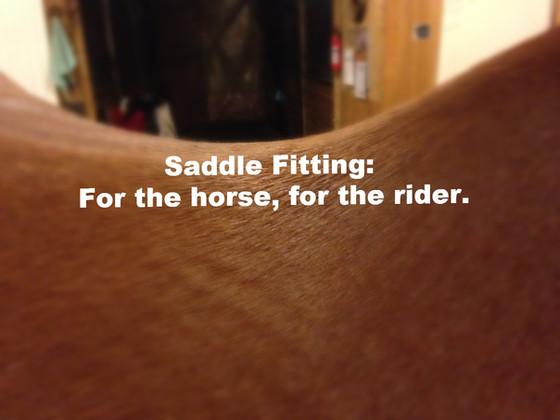 Saddle Fitting: for the horse, for the rider.
