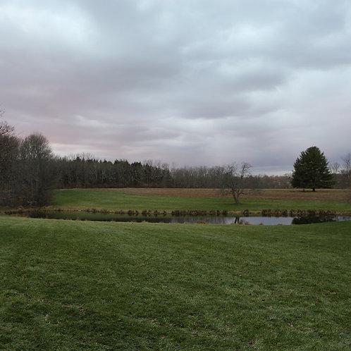 Farm At Dusk