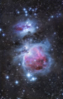 orion m42 astrophoto 80ed night sky nebulae